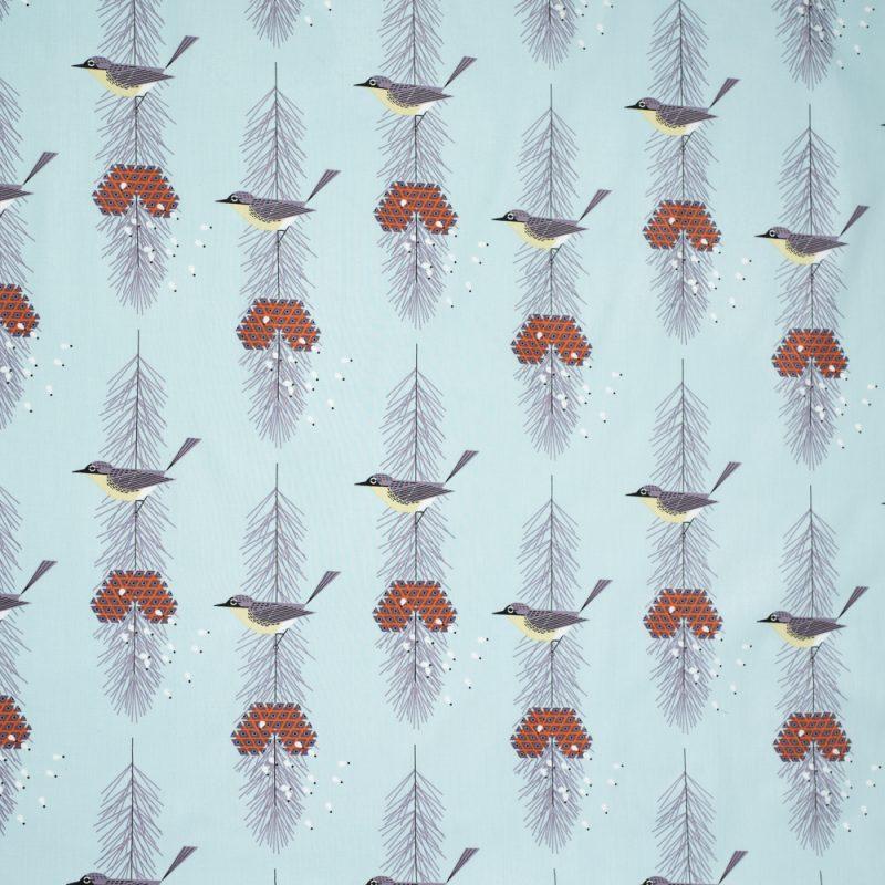 Kirtlands Warbler
