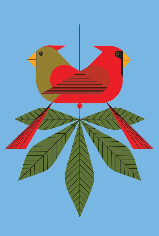 cardinals notepad